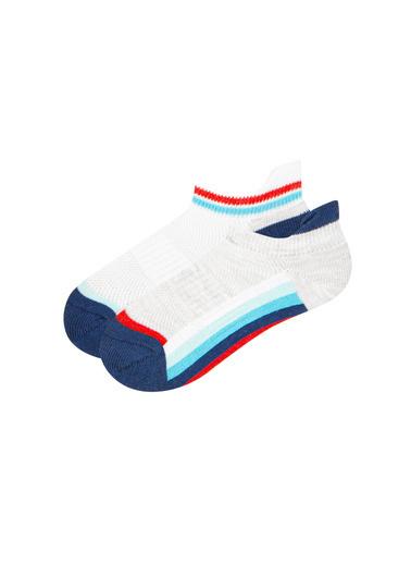 Penti 2'li Çorap Renkli